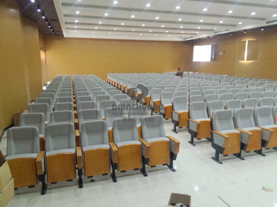 湖北荆州沙市中学报告厅项目